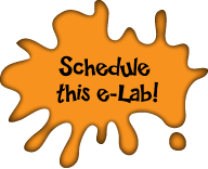 Schedule this e-Lab